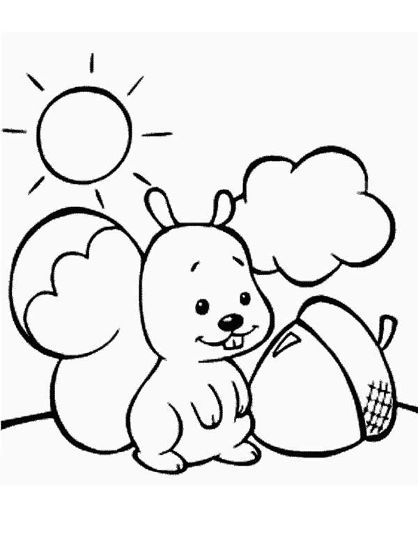 600x800 Cute Baby Squirrel And Oak Nut Coloring Page