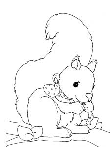 225x300 Phenomenal Coloringages Squirrelage Withrintable Of For Kids Free