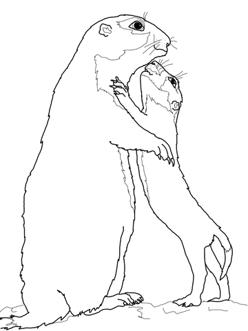360x480 Prairie Dog Mother With Baby Coloring Page