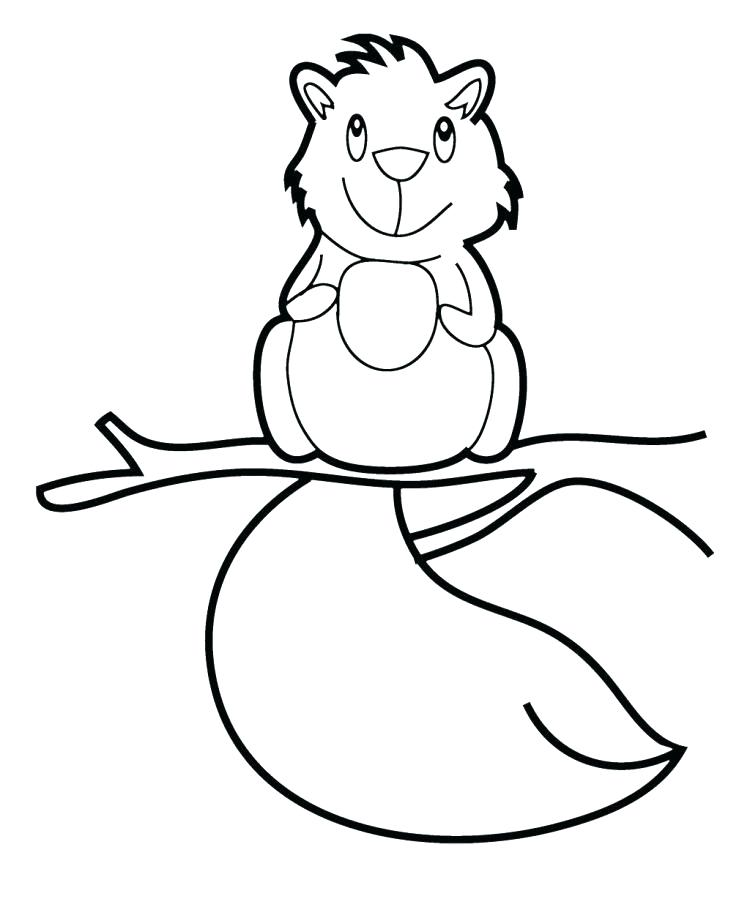 750x899 Squirrel Coloring Page Coloring Pages Of Squirrels Cute Baby