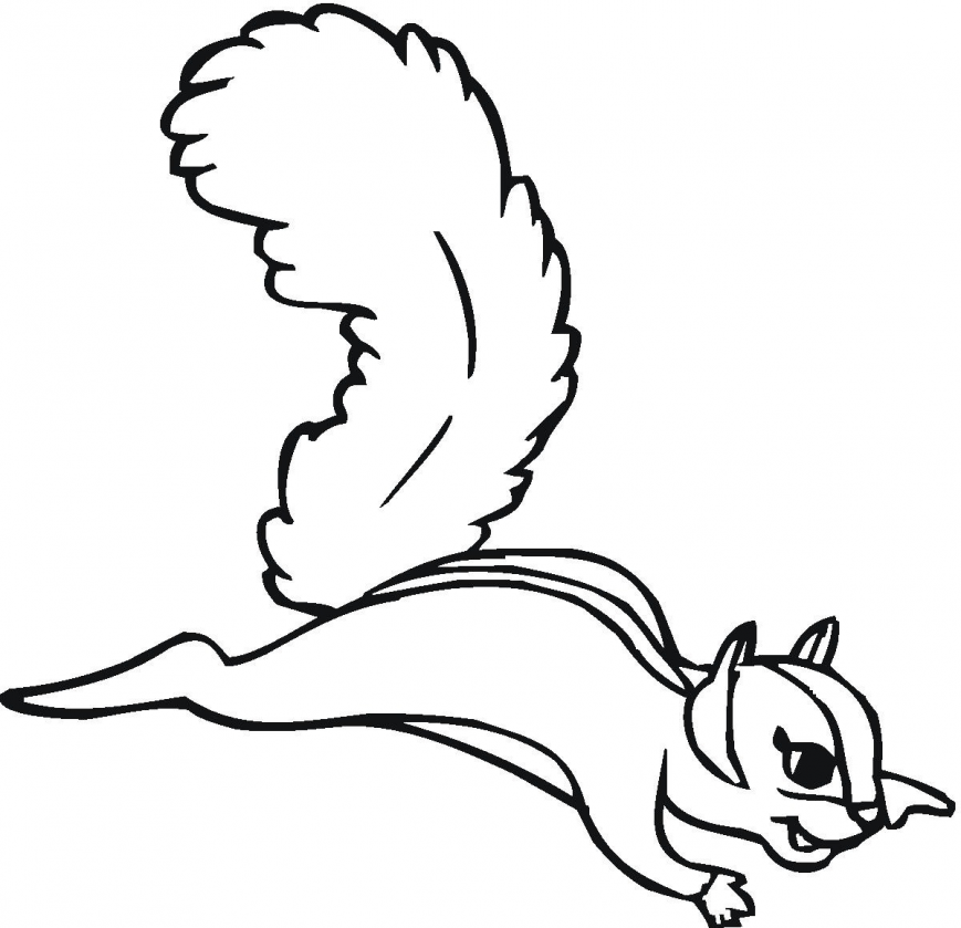 869x839 Squirrel Coloring Pages Image Inspirations Scaredy Baby Nutkin