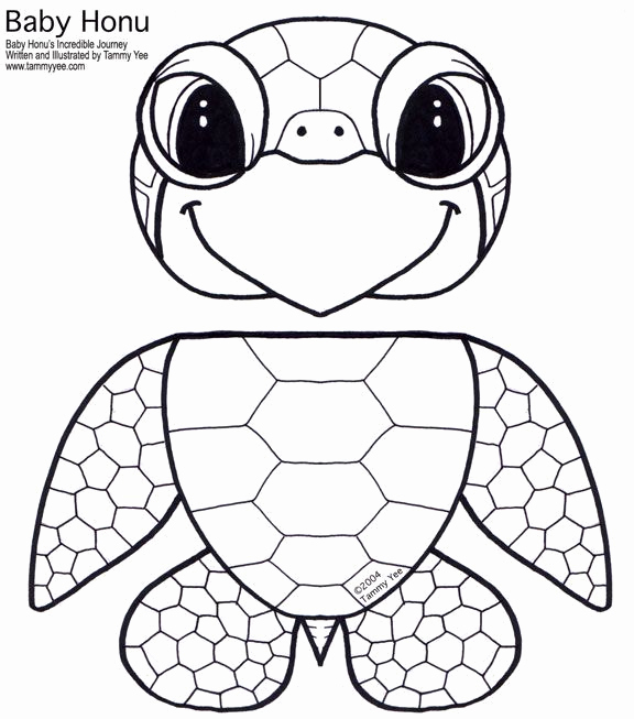576x653 Image Result For Best Outline Printable Of Sea Turtle Coloring