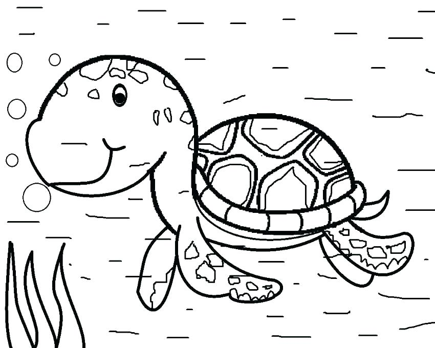 850x680 Realistic Sea Turtle Coloring Pages Sea Turtle Pictures To Sapia