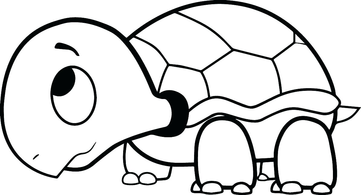 1196x648 Teenage Mutant Ninja Turtles Coloring Pages With Turtle Coloring