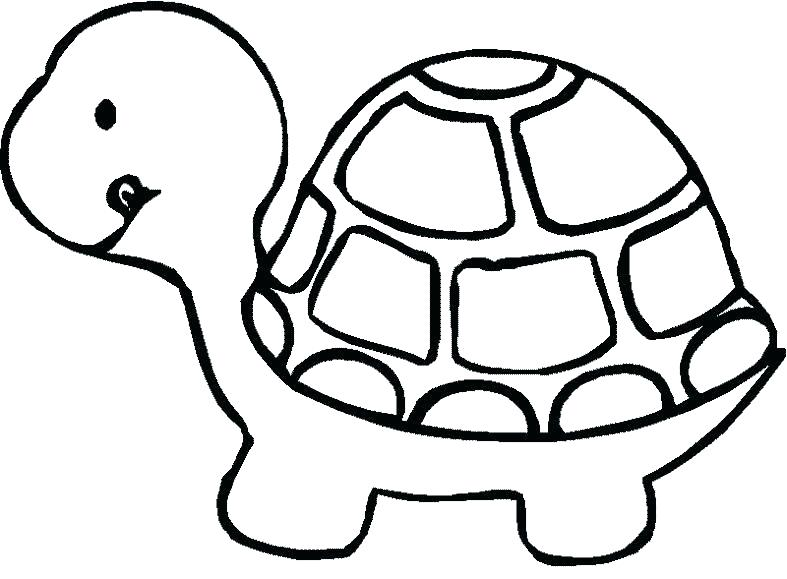 787x579 Baby Turtle Drawing Free Coloring Turtle Coloring Pictures