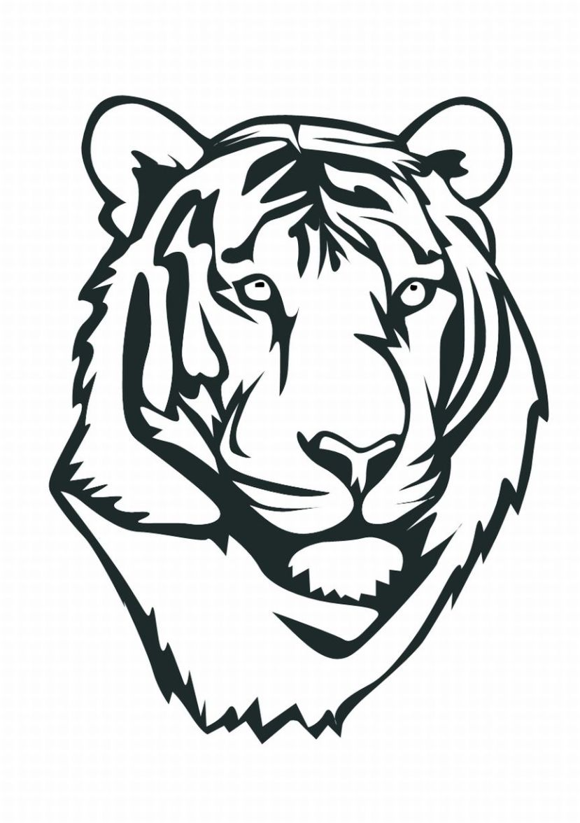 829x1176 Baby White Tiger Face Coloring Pages For Kids