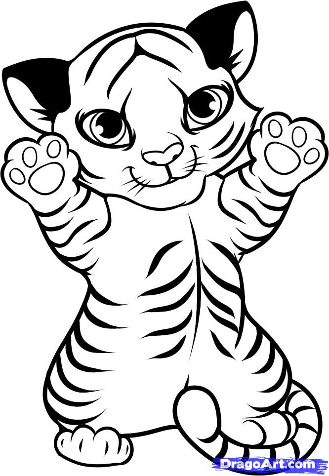666x964 Baby Tiger Coloring Pages Ba Tiger Coloring Pages Printable