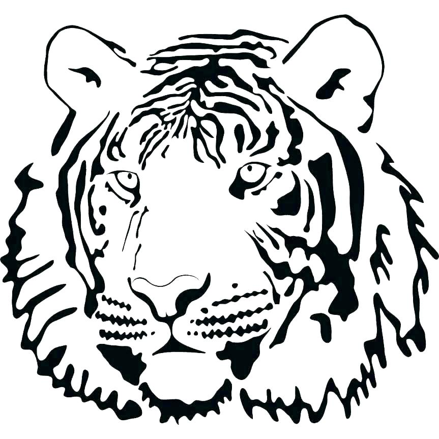 863x863 Tiger Coloring Page Cute Baby Tiger Coloring Pages Cub Page