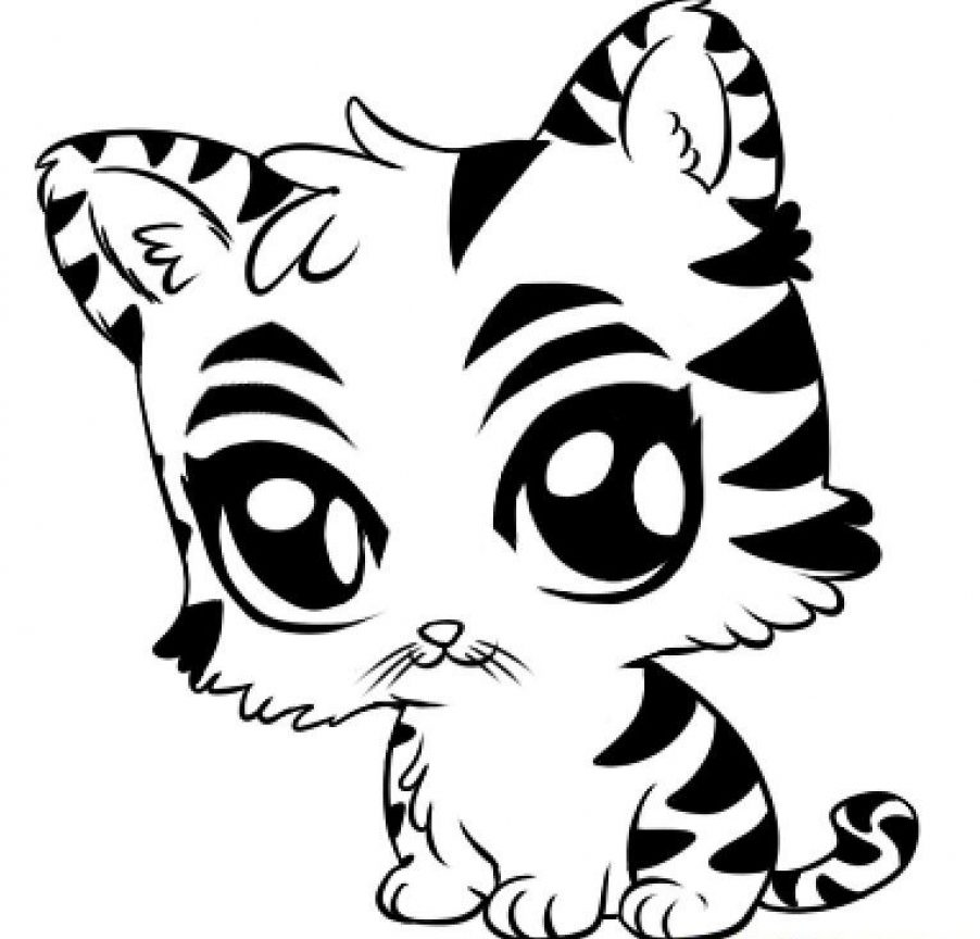 902x864 Tiger Coloring Page Cute Cub Pages Cartoon Baby For Kids White