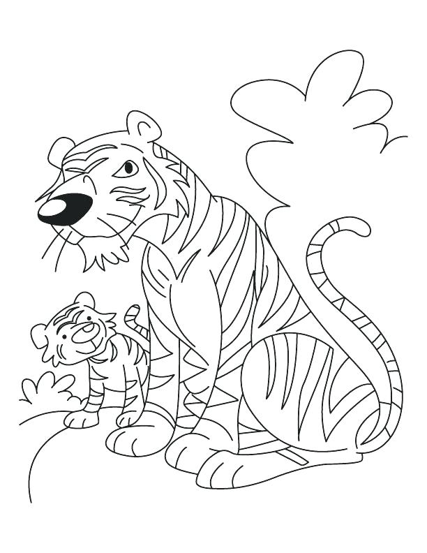 612x792 White Tiger Coloring Pages