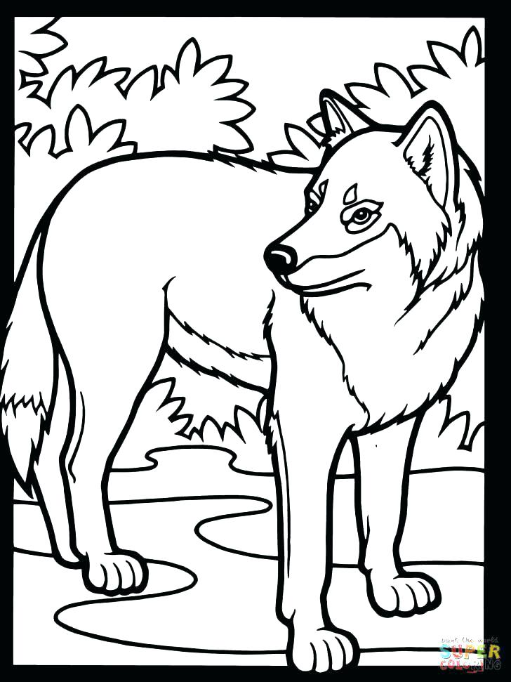 728x971 Wolf Coloring Pages High Definition Coloring Wallpaper Coloring