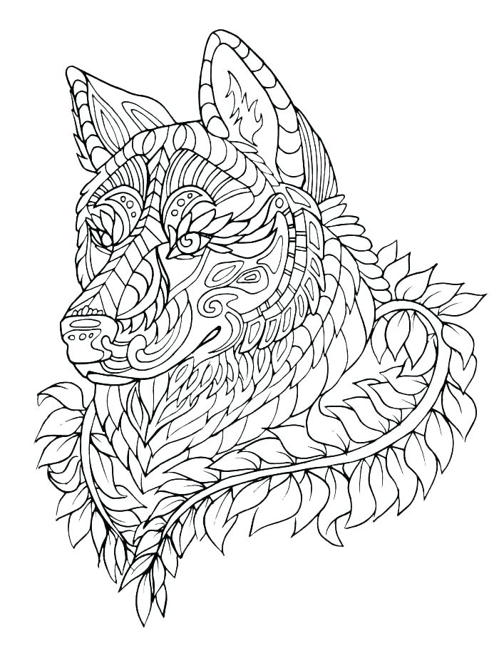 700x923 Wolf Coloring Pictures Wolves Pages Printable Full Baby Wolf