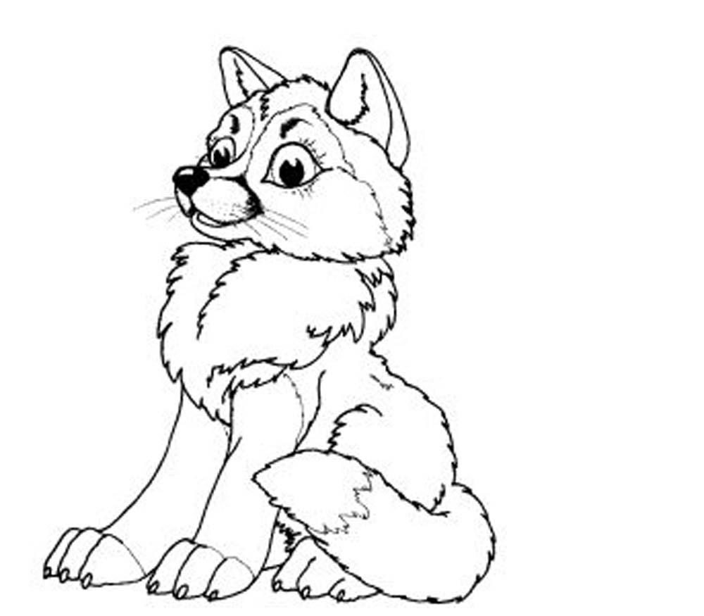 1000x875 Baby Wolf Coloring Pages