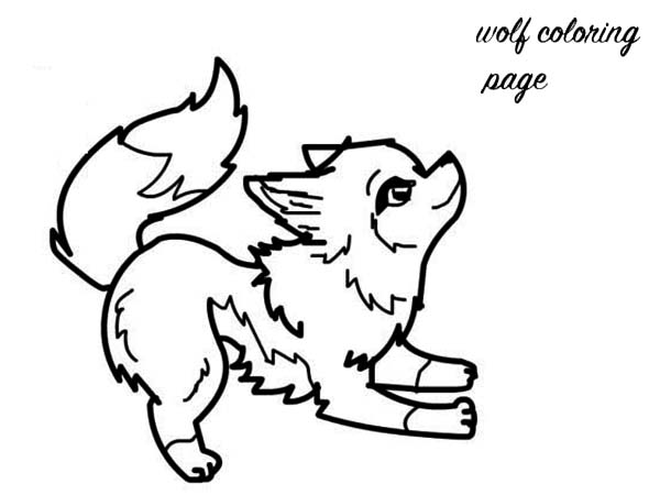 600x450 Baby Wolf Coloring Page