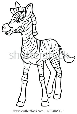 318x470 Coloring Pages Of Zebras Coloring Pages Little Cute Baby Zebra