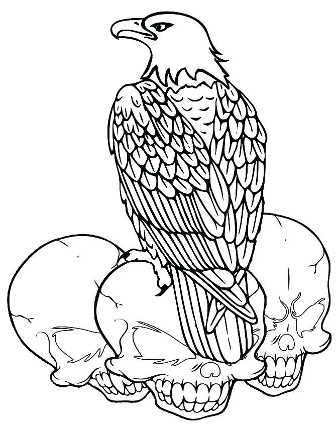 669x850 Bald Eagle Coloring Page Bald Eagle Coloring Sheets Printable Bald