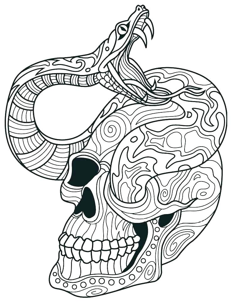 736x962 Rattlesnake Coloring Page Rattlesnake Coloring Pages Trend Ball