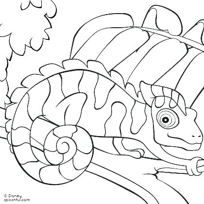 420x420 Ball Python Coloring Pages Ball Python Coloring Pages Ball Python