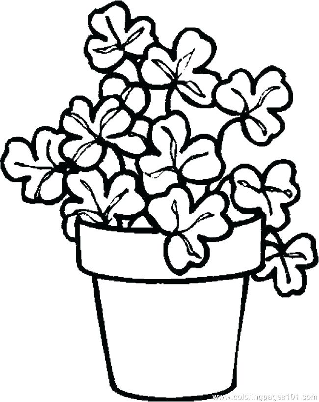 650x818 Coloring Pages Plants Sea Plants Coloring Pages Coloring Pages