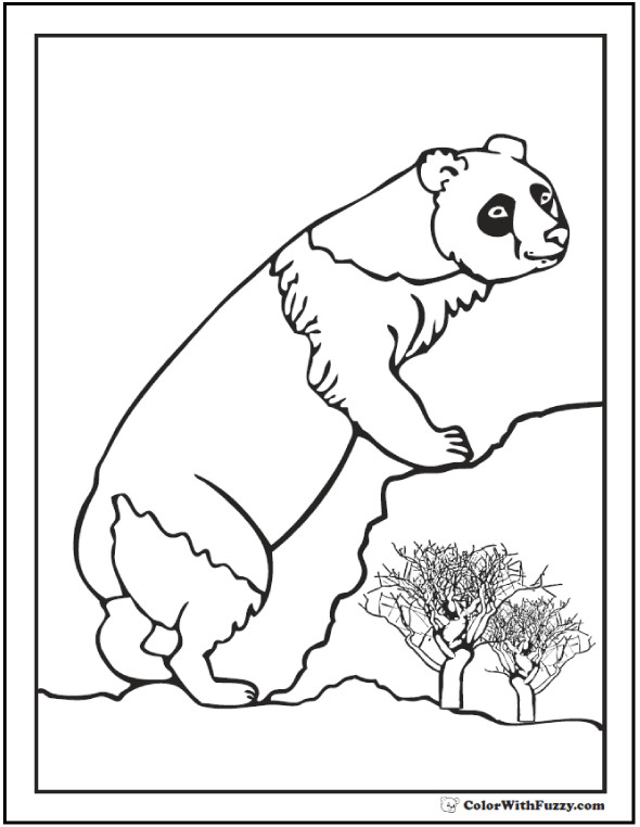 590x762 Panda Bears Coloring Pages Unique Panda Coloring Pages Bamboo