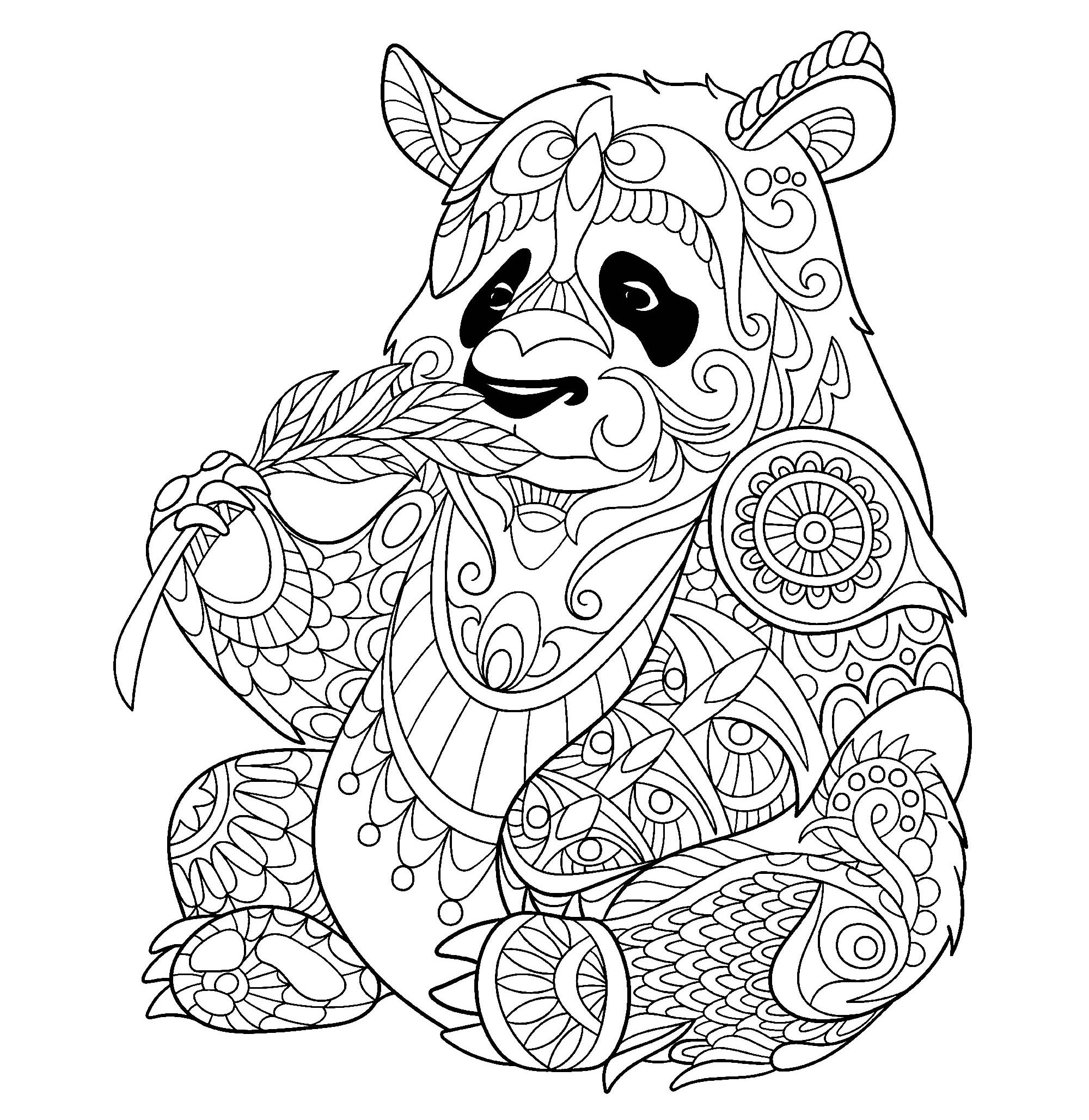 2000x2057 Panda Eating Bamboo Shoot