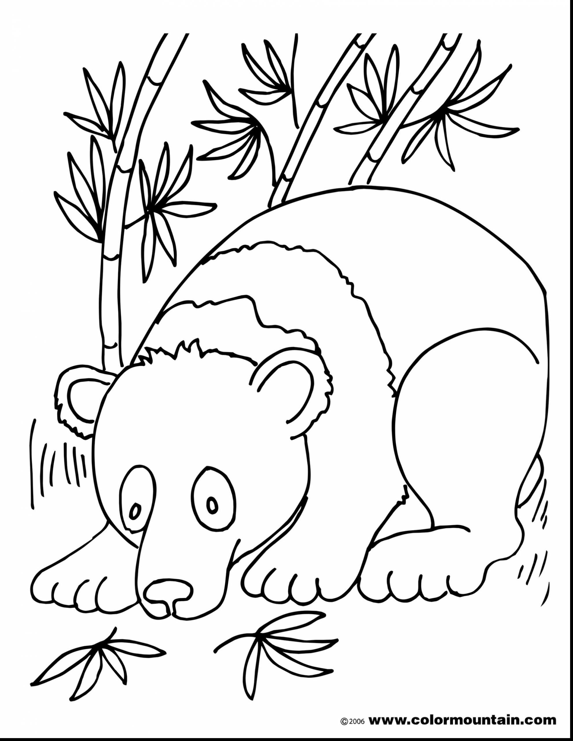 1980x2561 Bamboo Forest Coloring Pages