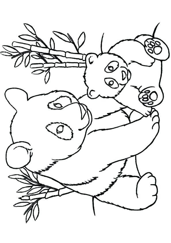 595x842 Coloring Bamboo Coloring Pages Color Happy Birthday Thing