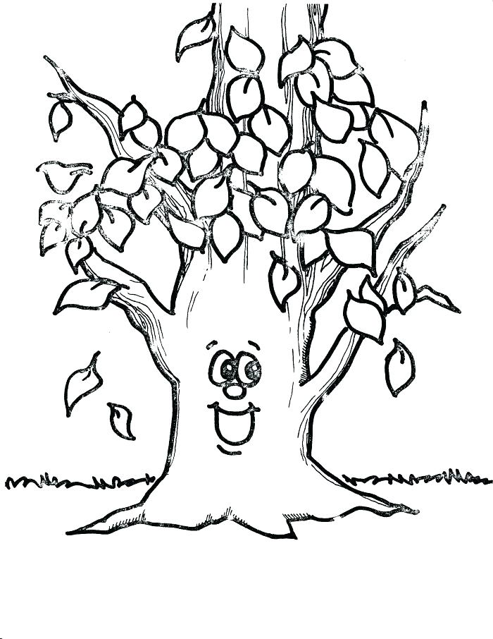 700x906 Printable Tree Coloring Page Free Printable Tree Coloring Pages