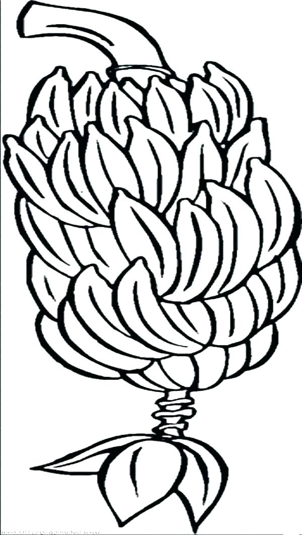 600x1062 Banana Coloring Pages