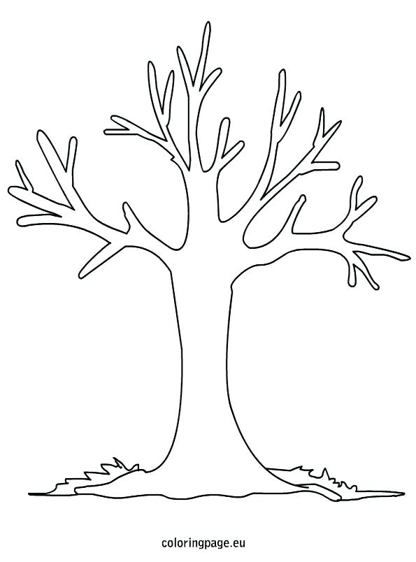 595x804 Bare Tree Coloring Page Together With Coloring Bare Tree Outline