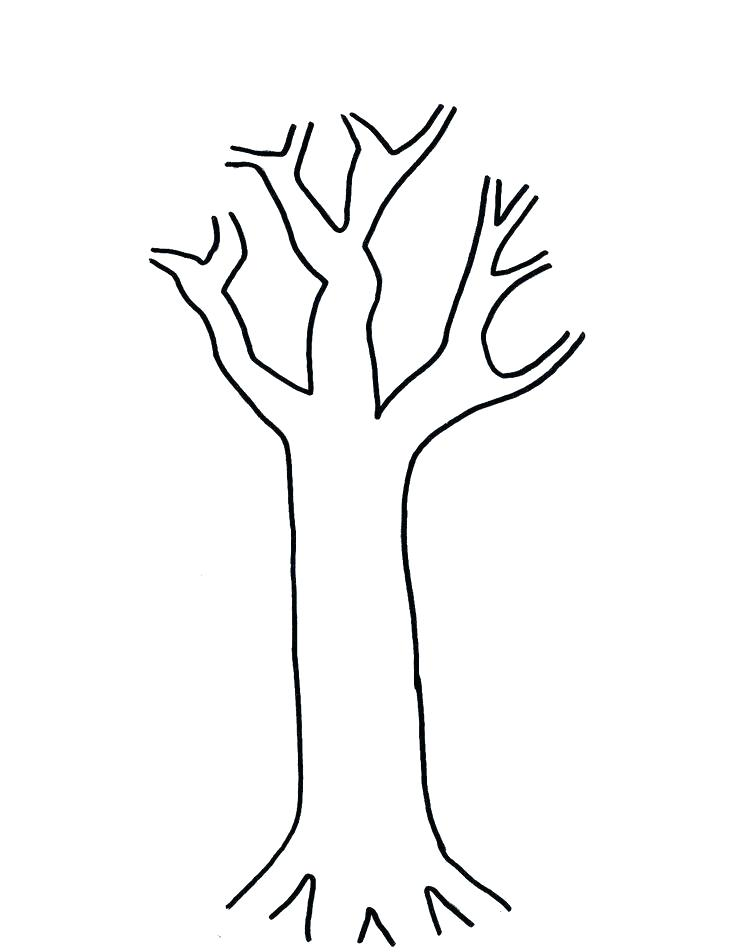 736x952 Bare Tree Coloring Page Pages Simple Bare Tree Outline Bare Tree