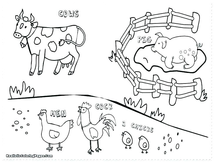 728x553 Free Coloring Pages Of Animals Free Coloring Pages Animals Animal