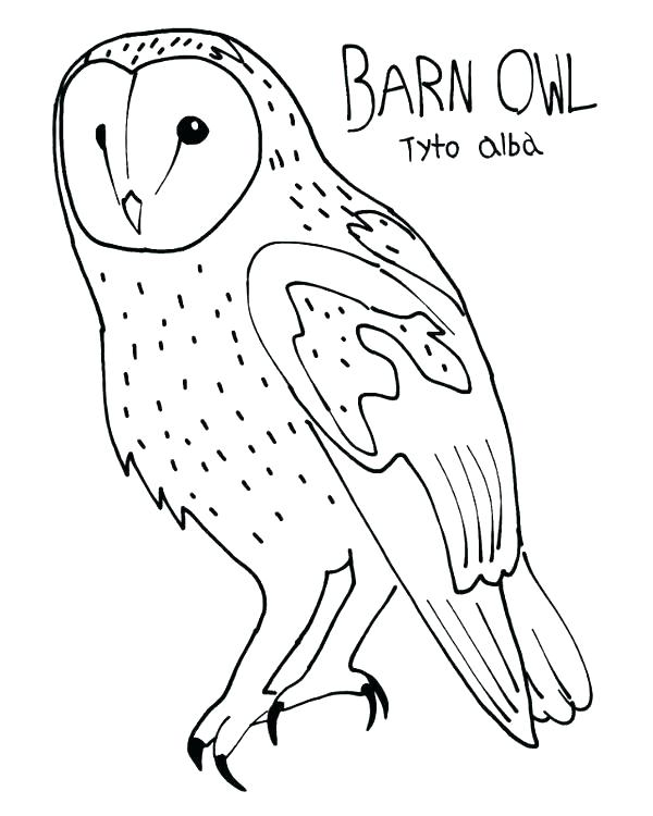 600x750 Barn Coloring Page S Barn Coloring Pages For Toddlers