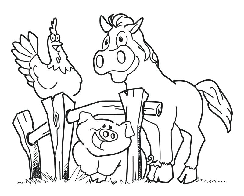 800x642 Printable Farm Coloring Pages Farm Coloring Pages Printable Page