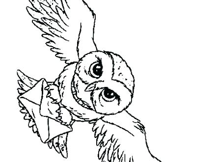 440x330 Barn Coloring Page Snowy Owl Coloring Pages Snowy Owl Coloring