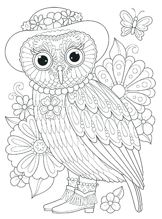 516x700 Printable Barn Owl Coloring Pages Colouring Pictures Of Barn Owls