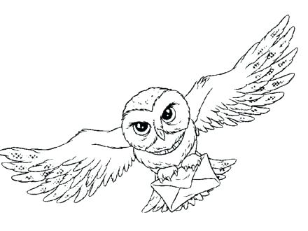 440x330 Barn Owl Coloring Page Barn Owl Coloring Page Kids Coloring New