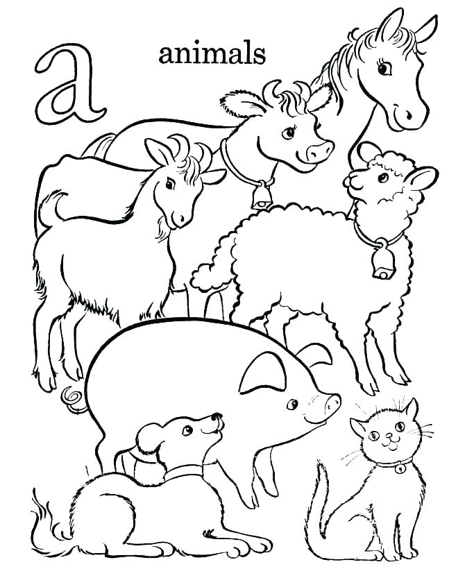 Barnyard Animals Coloring Pages