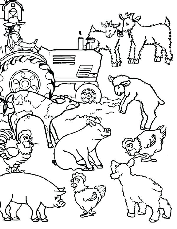 600x776 Farm Animals Coloring Pages Farm Animal Farm Animal Activities