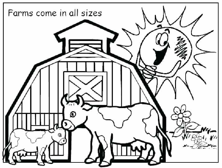 714x541 Farm Coloring Pages Farm Animals Coloring Book For Adults Kids