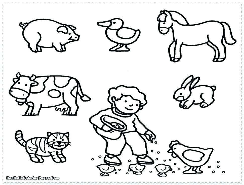 970x737 Barnyard Coloring Pages Barn Animals Coloring Pages Baby Farm