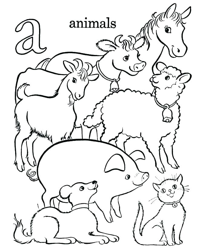 670x820 Baby Farm Animals Coloring Pages Cool Animal Coloring Pages Animal