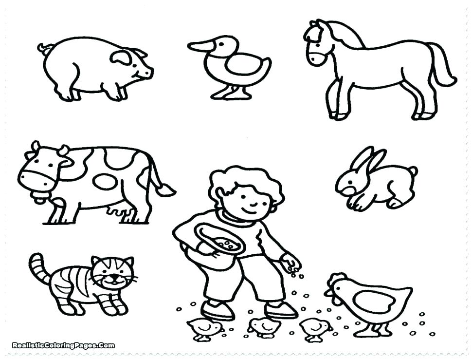 970x737 Farm Animal Pictures To Color
