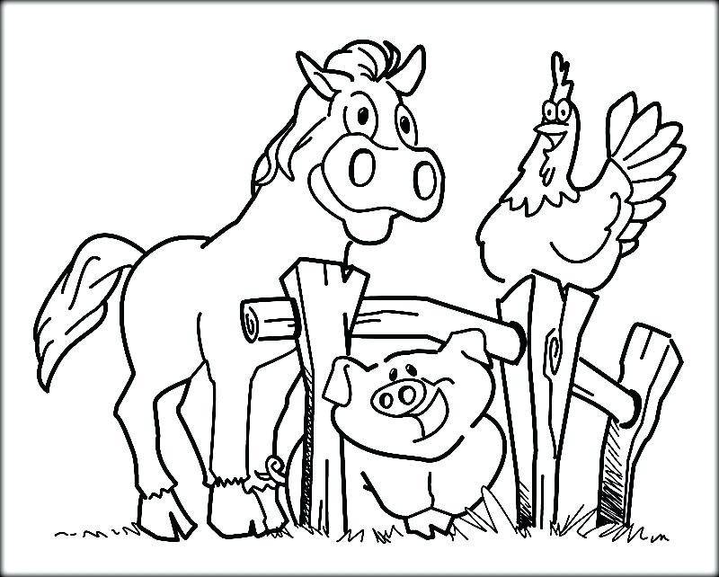 800x642 Barnyard Animals Good Farm Animals Coloring Pages