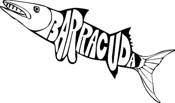600x354 Barracuda Fish Coloring Pages For Kids Best Place To Color