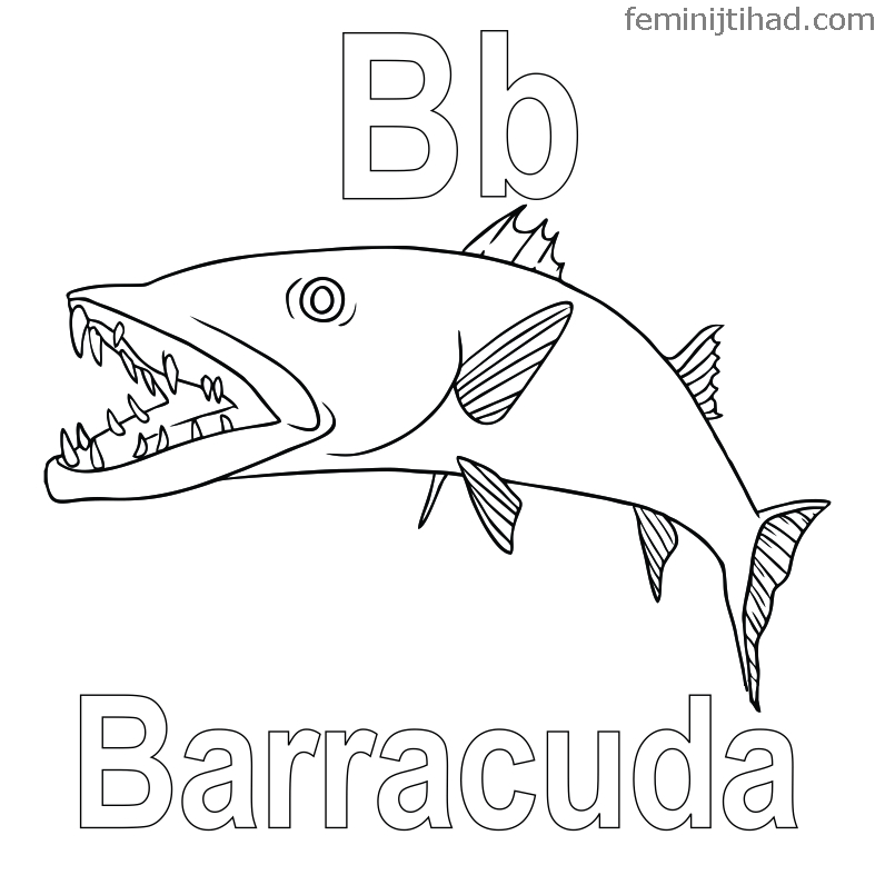 787x787 Printable Barracuda Coloring Pages Coloring Pages For Kids