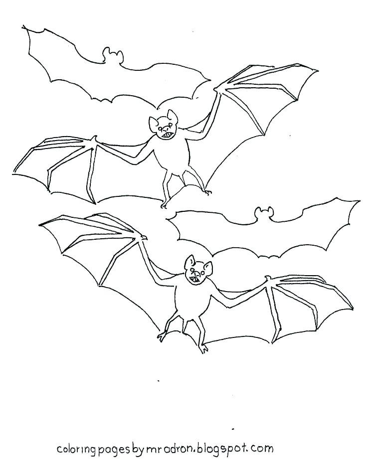 736x955 Bat Coloring Page Coloring Pages Bats Baseball Bat Coloring Page