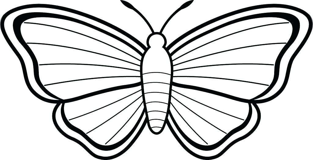 1024x524 Simple Butterfly Coloring Pages Also Simple Butterfly Coloring