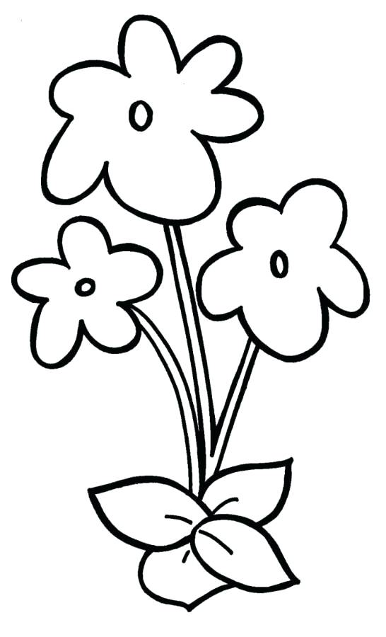 546x900 Easy Flower Coloring Pages Easy Violet Flower Coloring Page