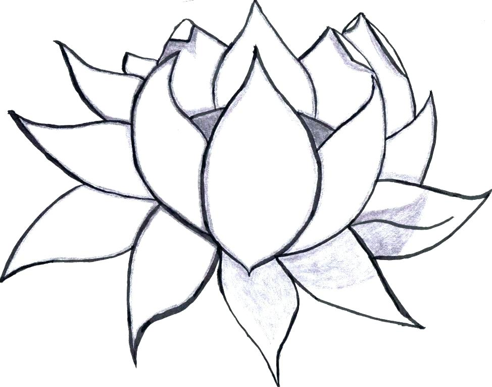 974x765 Easy Flower Coloring Pages Patterns Coloring Pages Easy Easy